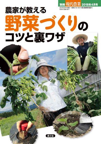 別冊現代農業 農家が教える 野菜づくりのコツと裏ワザ