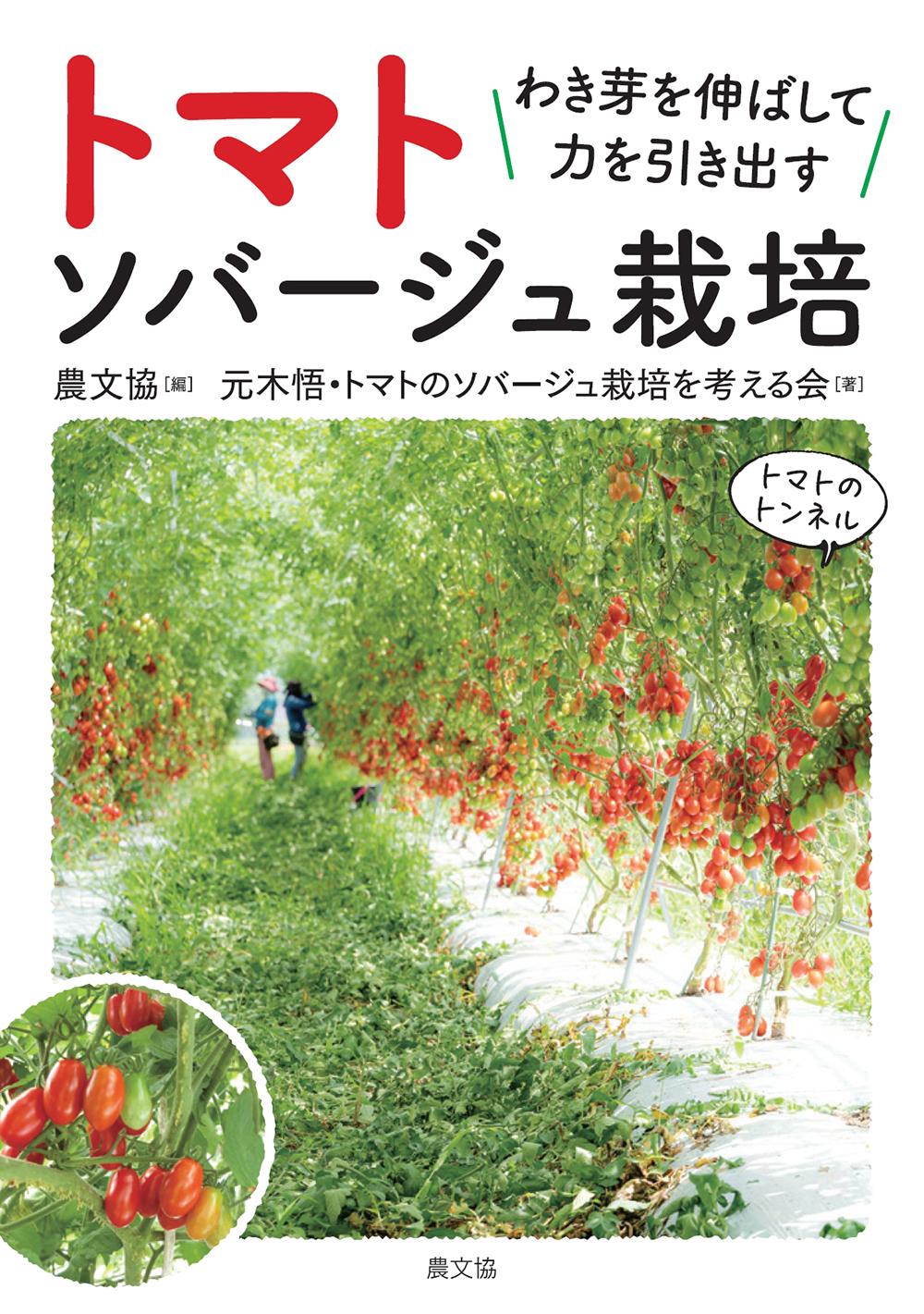 トマト ソバージュ栽培