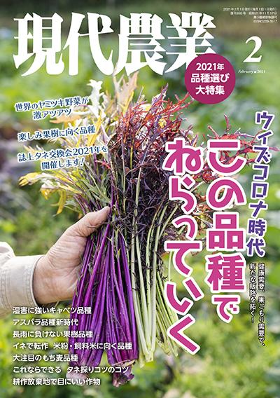 現代農業 2021年2月号