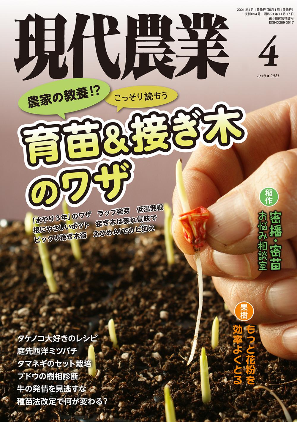 現代農業 2021年4月号